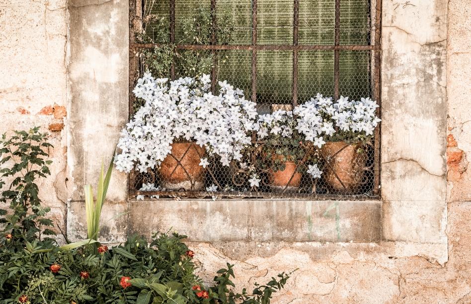 flowerpots, segovia